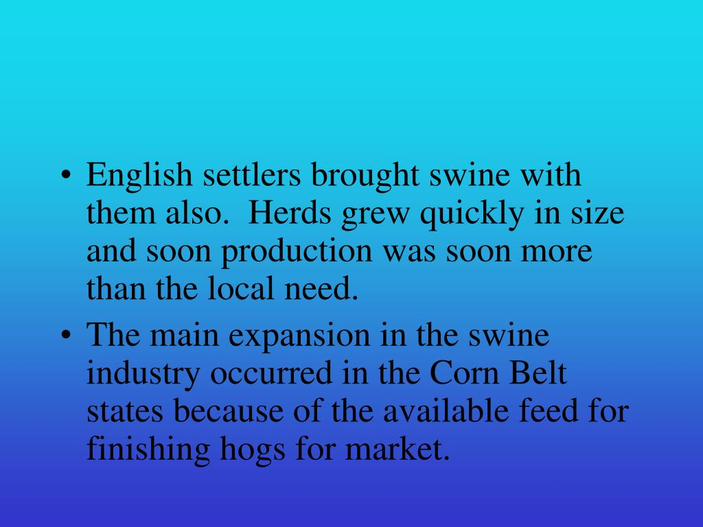 English settlers brought swine with them also.  Herds grew quickly in size and soon production was soon more than the local need.
