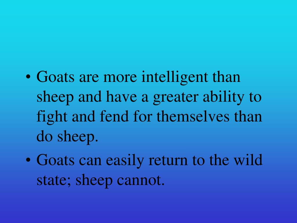 Goats are more intelligent than sheep and have a greater ability to fight and fend for themselves than do sheep.