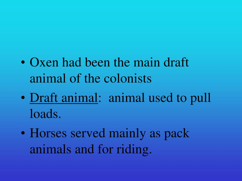 Oxen had been the main draft animal of the colonists