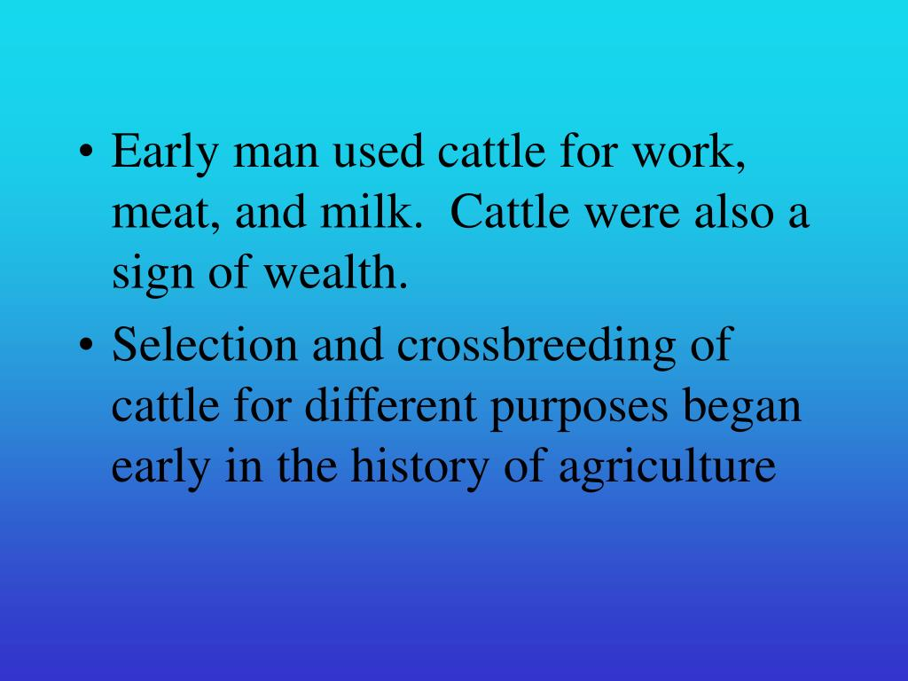 Early man used cattle for work, meat, and milk.  Cattle were also a sign of wealth.