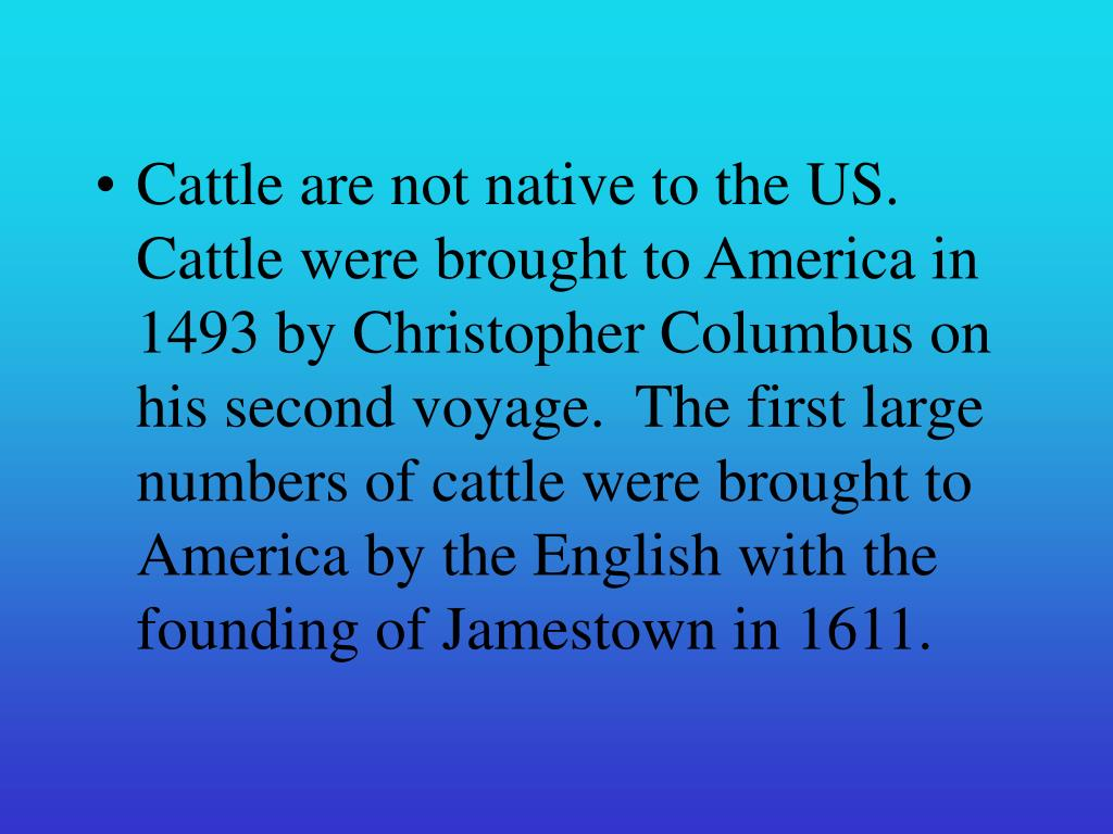 Cattle are not native to the US.  Cattle were brought to America in 1493 by Christopher Columbus on his second voyage.  The first large numbers of cattle were brought to America by the English with the founding of Jamestown in 1611.