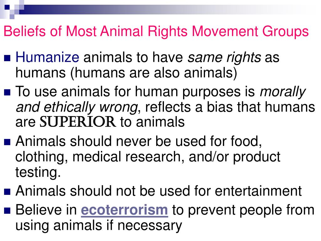 Beliefs of Most Animal Rights Movement Groups