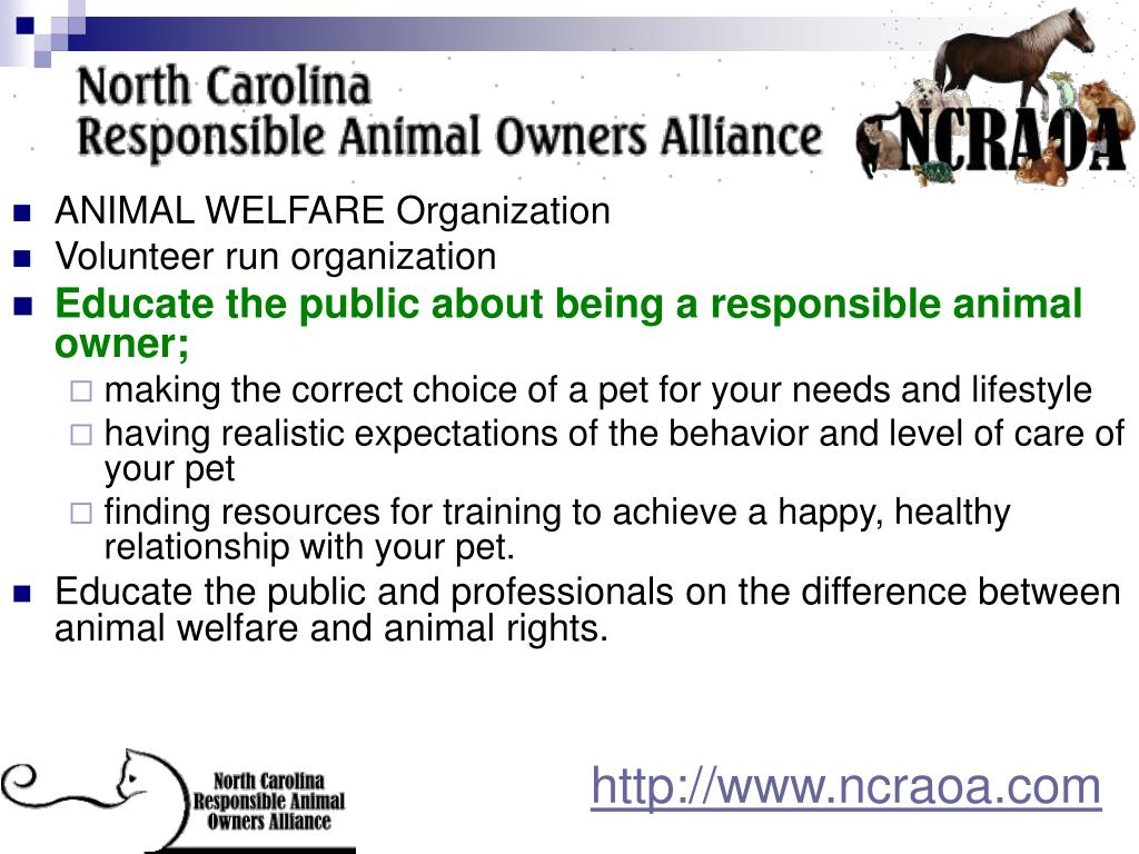 ANIMAL WELFARE Organization