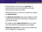 body plans basic structural designs13