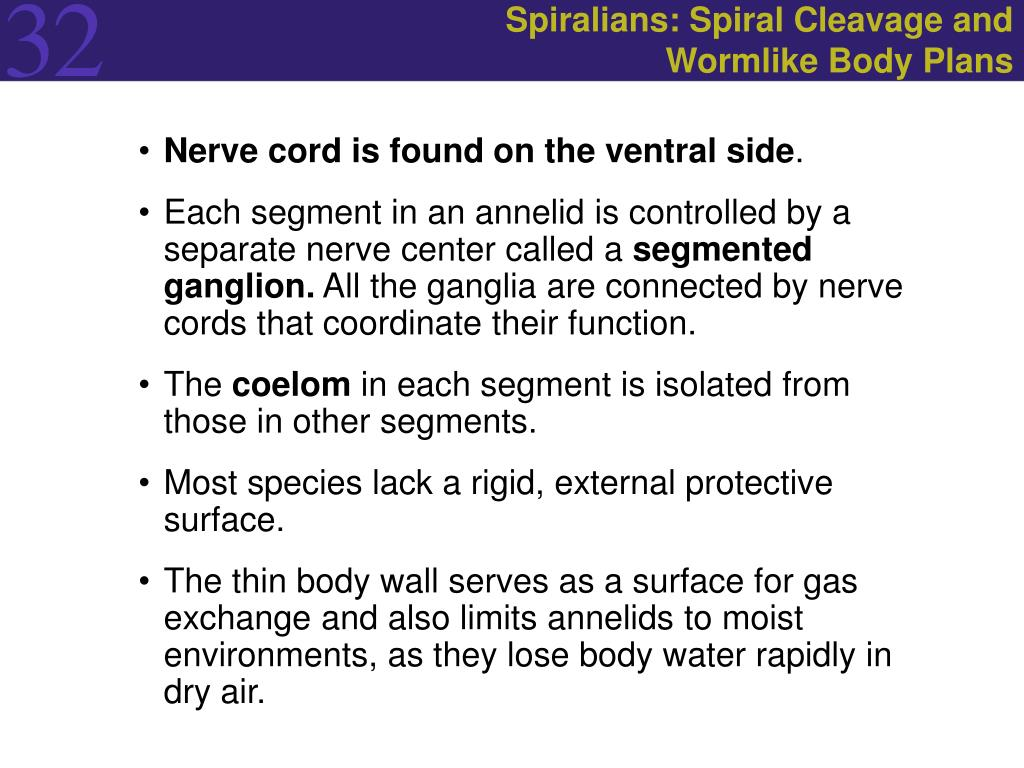 Spiralians: Spiral Cleavage and