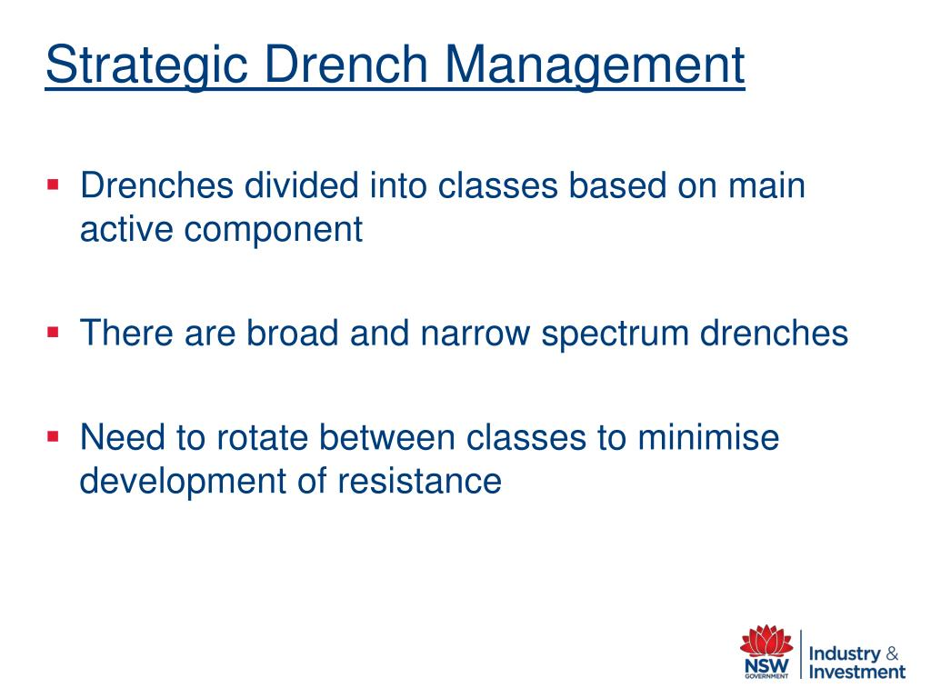 Strategic Drench Management