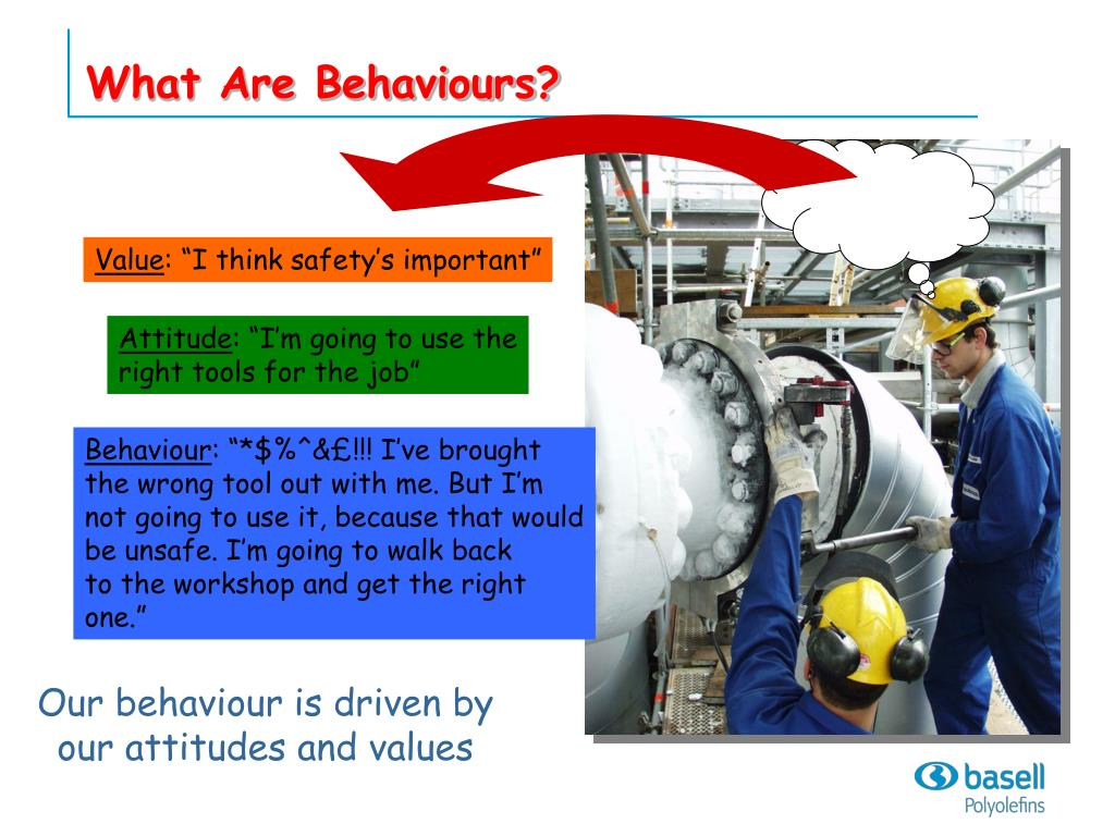 What Are Behaviours?