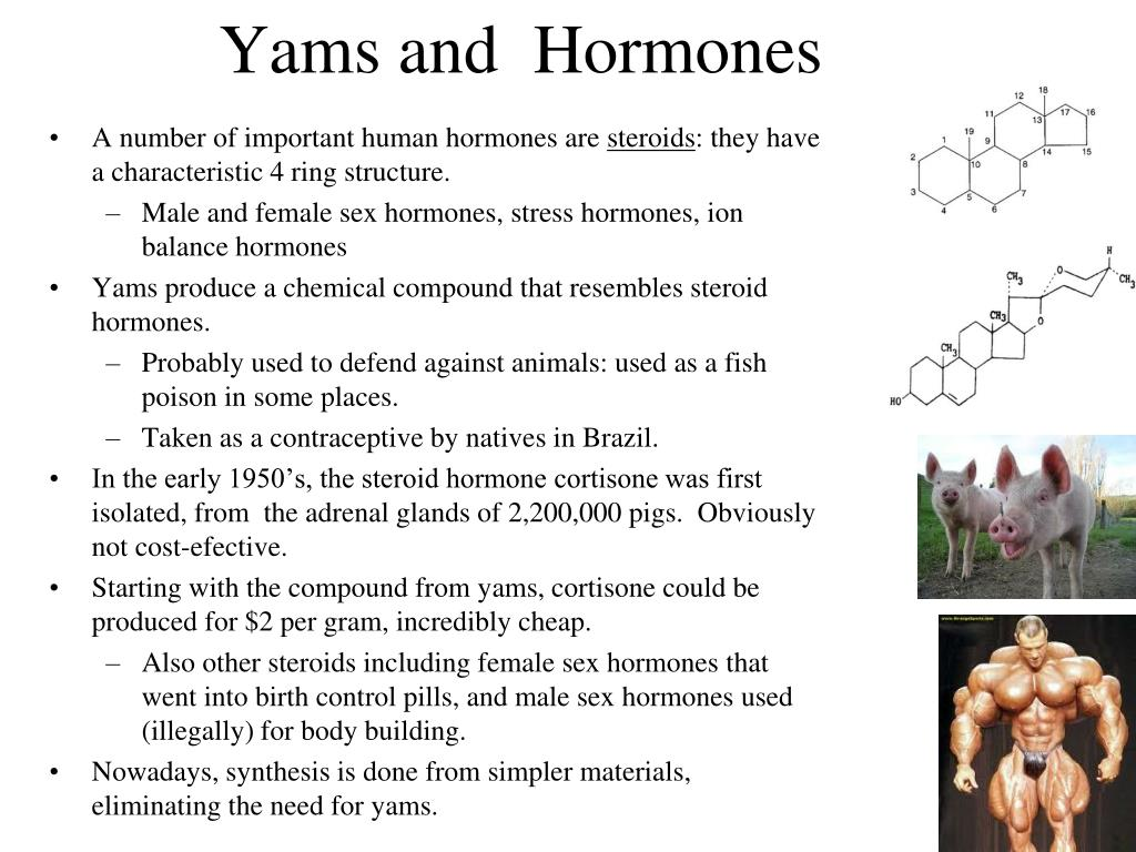 Yams and  Hormones