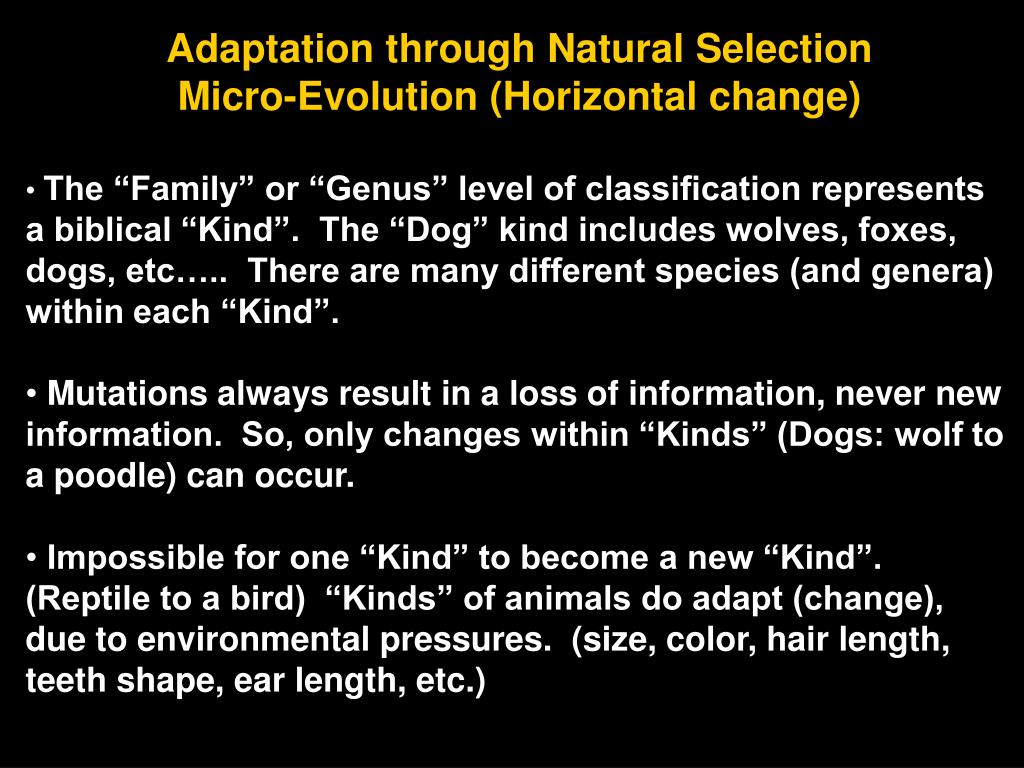 Adaptation through Natural Selection