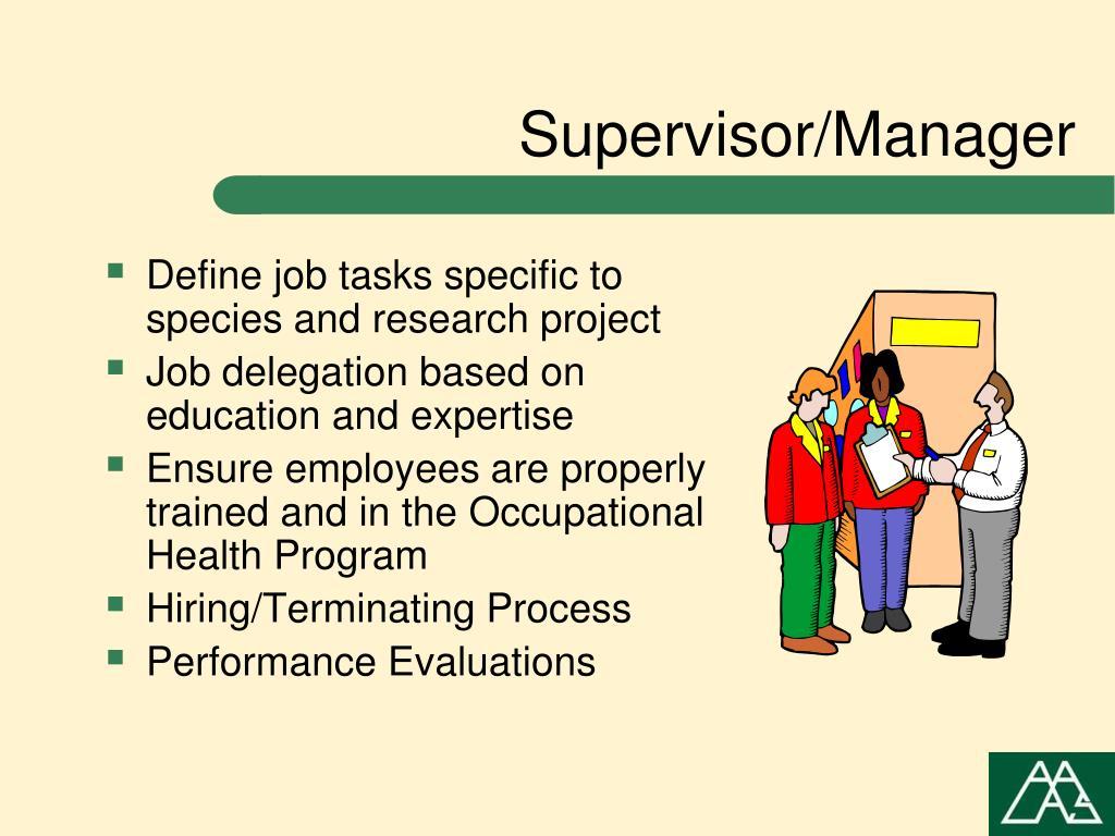 Supervisor/Manager