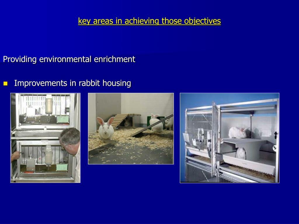Providing environmental enrichment