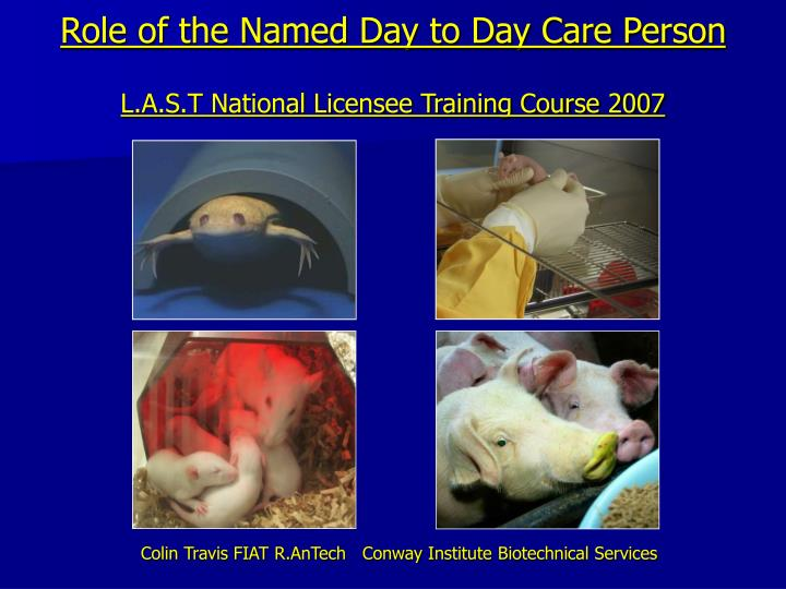 Role of the named day to day care person l a s t national licensee training course 2007 l.jpg
