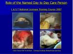 role of the named day to day care person l a s t national licensee training course 2007