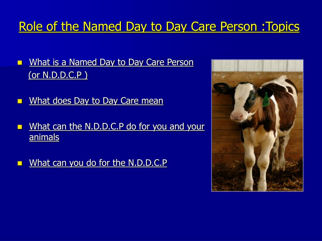 Role of the Named Day to Day Care Person :Topics