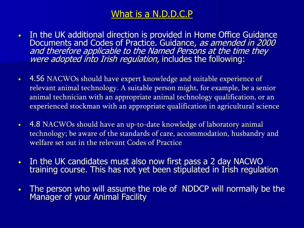 What is a N.D.D.C.P