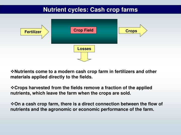 Nutrient cycles: Cash crop farms
