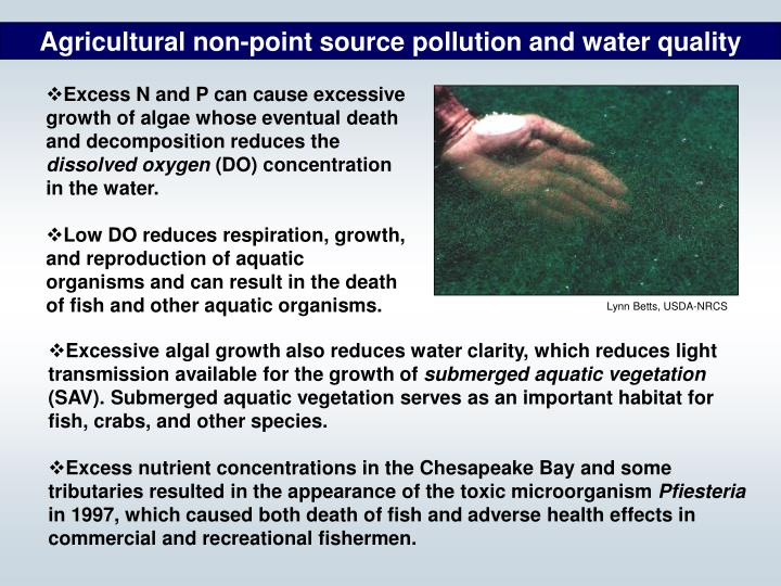 Agricultural non-point source pollution and water quality