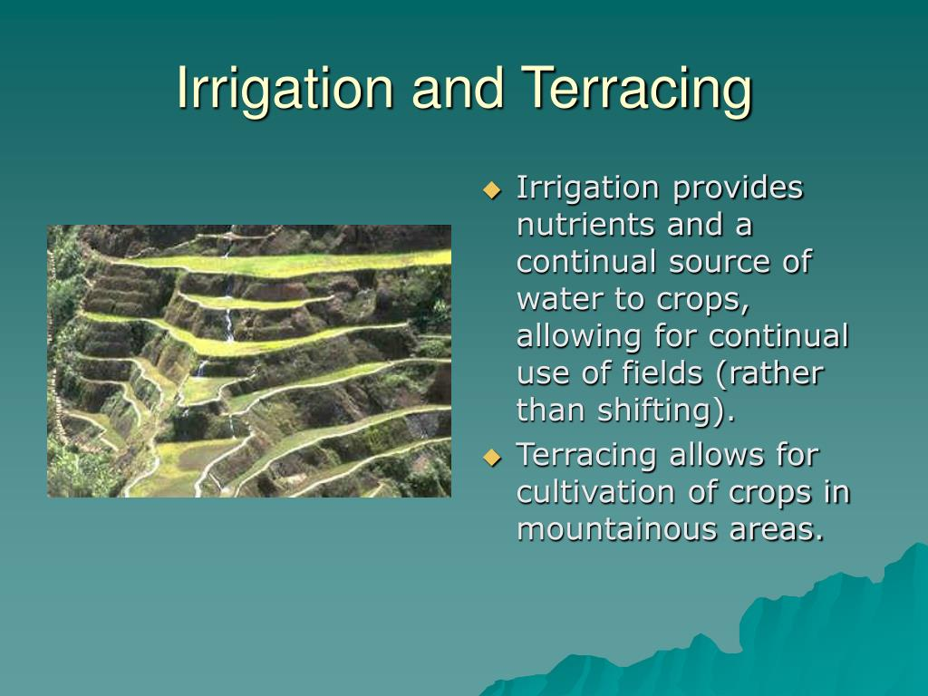 Irrigation and Terracing