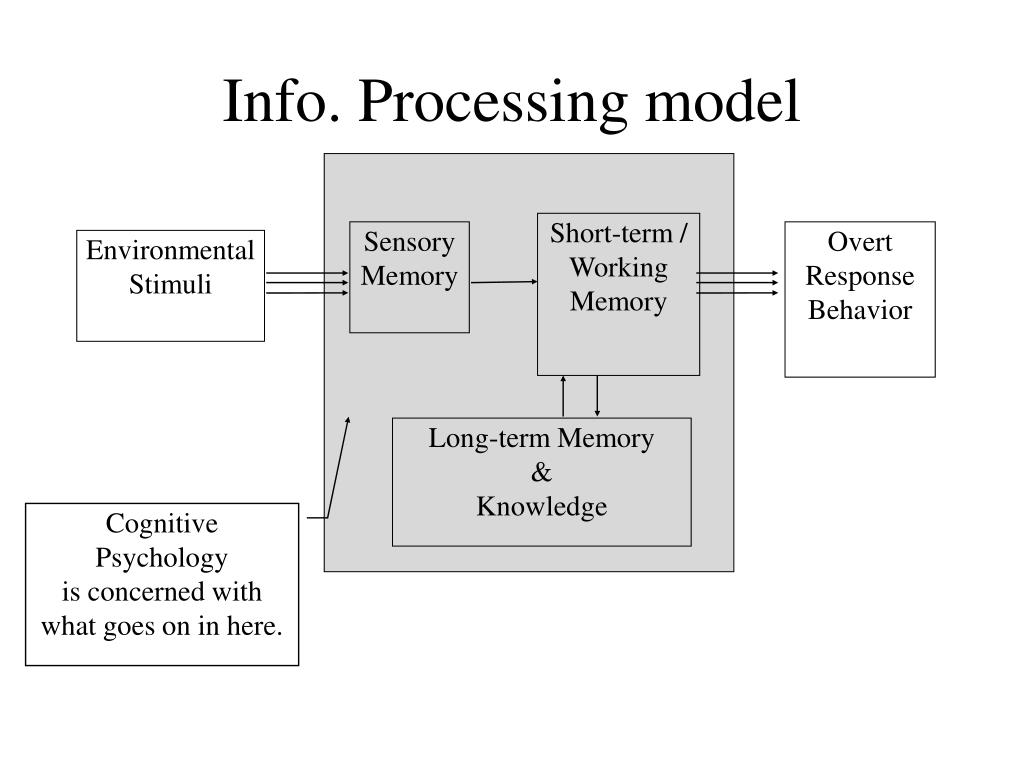Info. Processing model