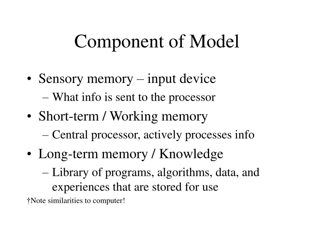 Component of Model