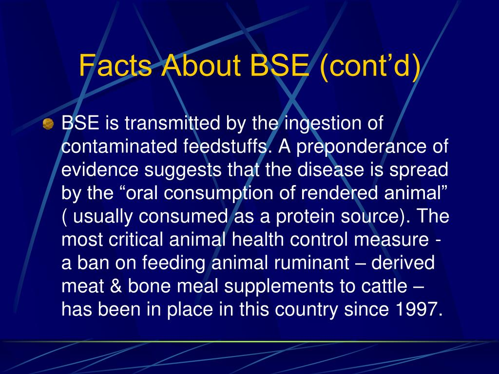 Facts About BSE (cont'd)
