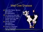 mad cow disease112