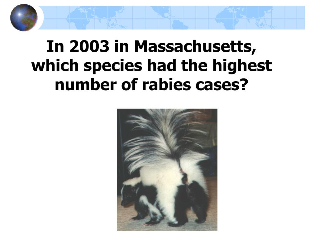 In 2003 in Massachusetts, which species had the highest number of rabies cases?