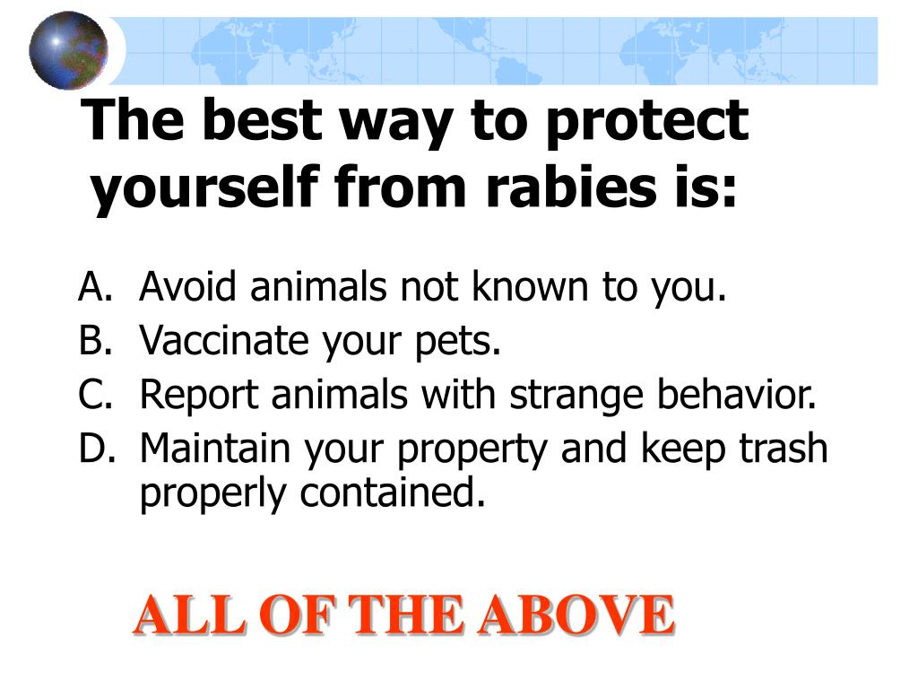 The best way to protect yourself from rabies is: