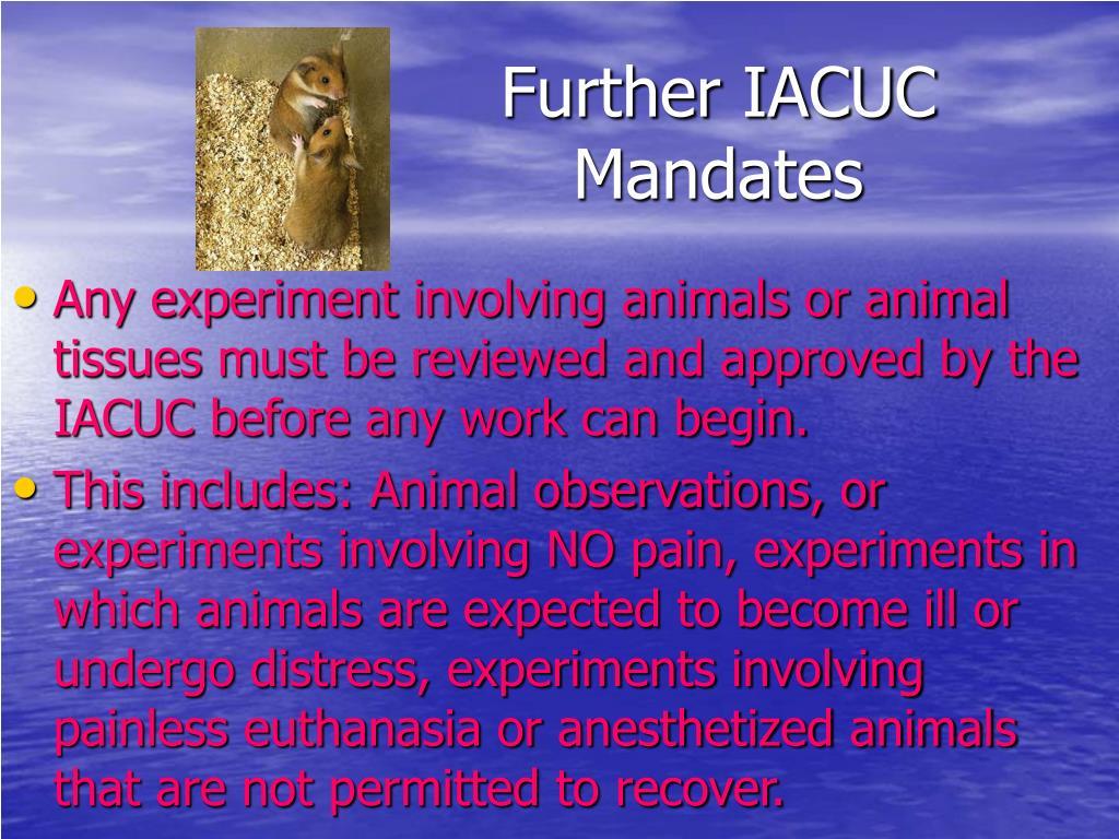 Further IACUC