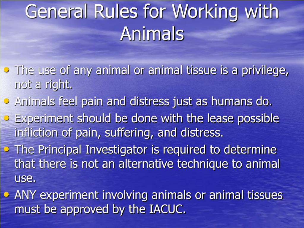 General Rules for Working with Animals