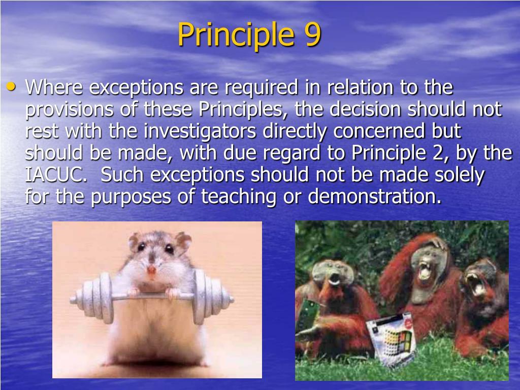 Principle 9