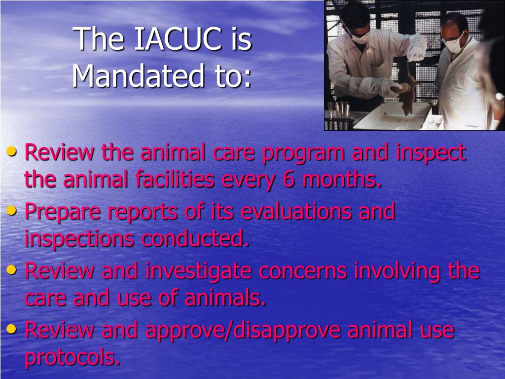 The IACUC is Mandated to: