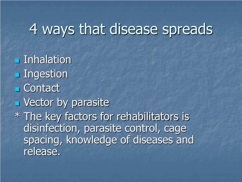 4 ways that disease spreads