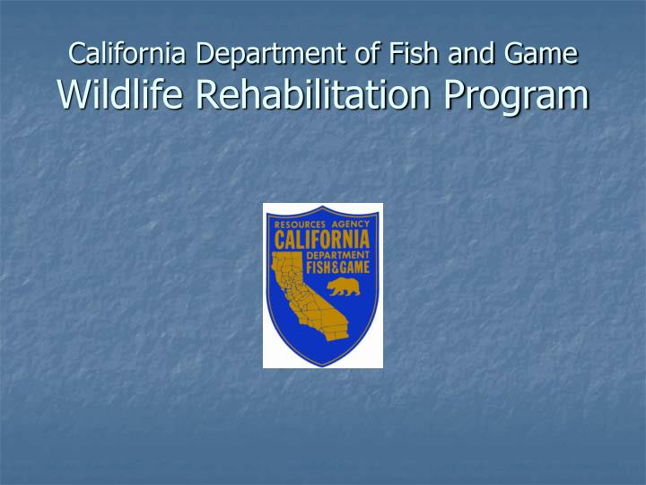 California department of fish and game wildlife rehabilitation program
