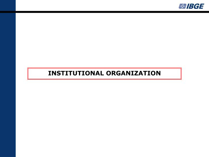 INSTITUTIONAL ORGANIZATION