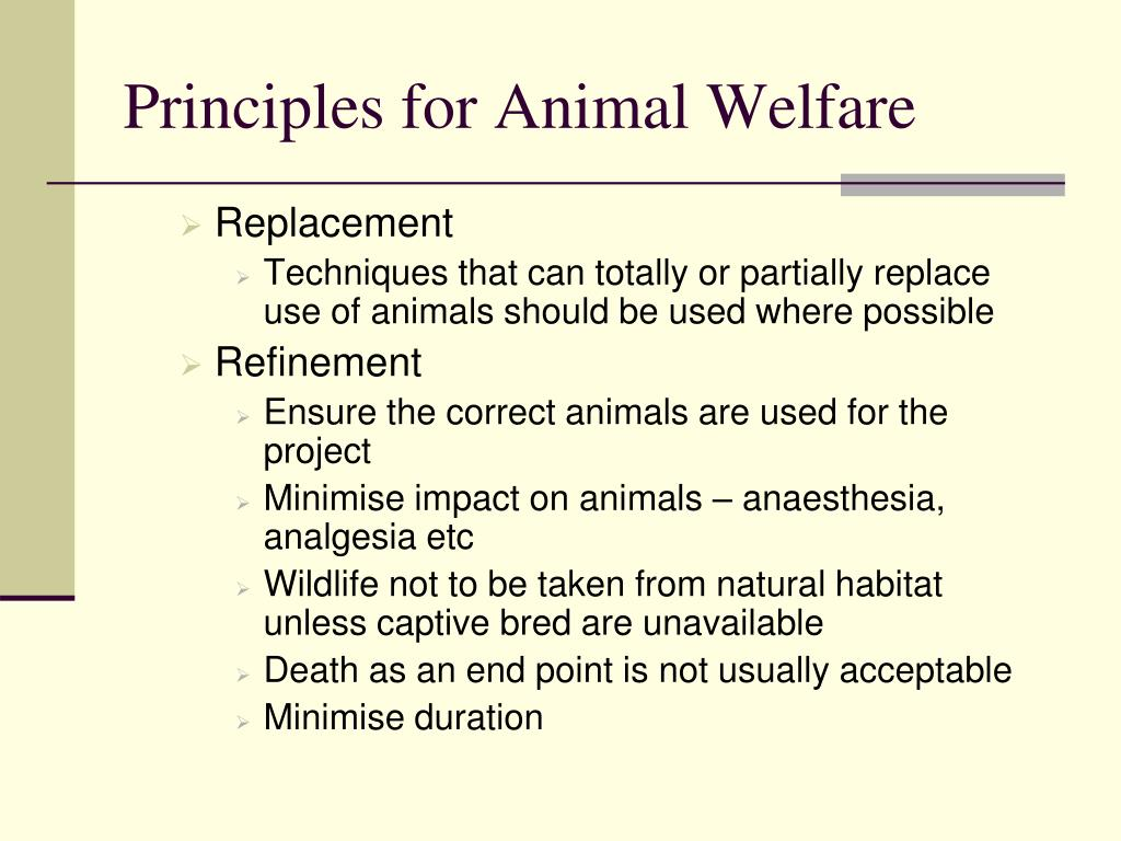 Principles for Animal Welfare