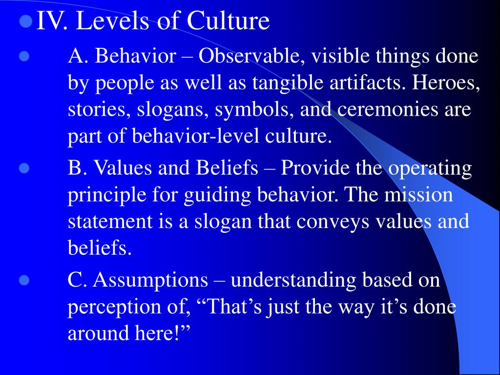 IV. Levels of Culture