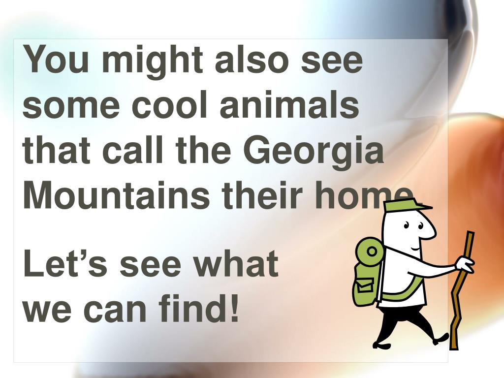 You might also see some cool animals that call the Georgia Mountains their home.