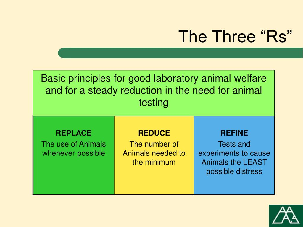 """The Three """"Rs"""""""