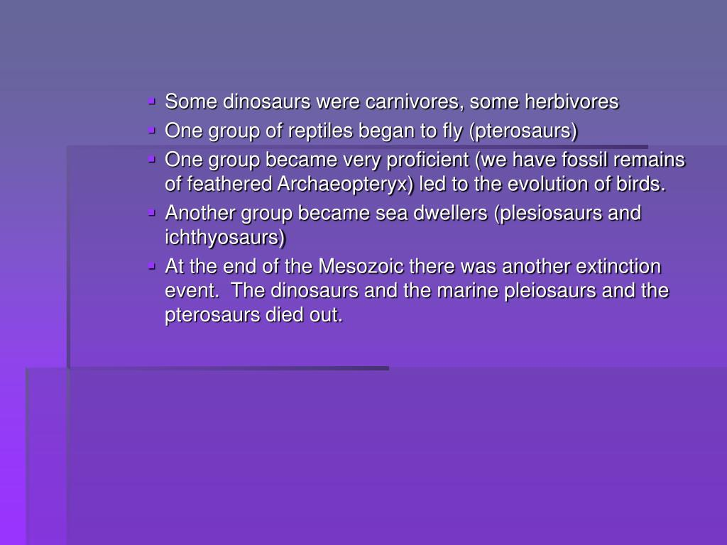 Some dinosaurs were carnivores, some herbivores