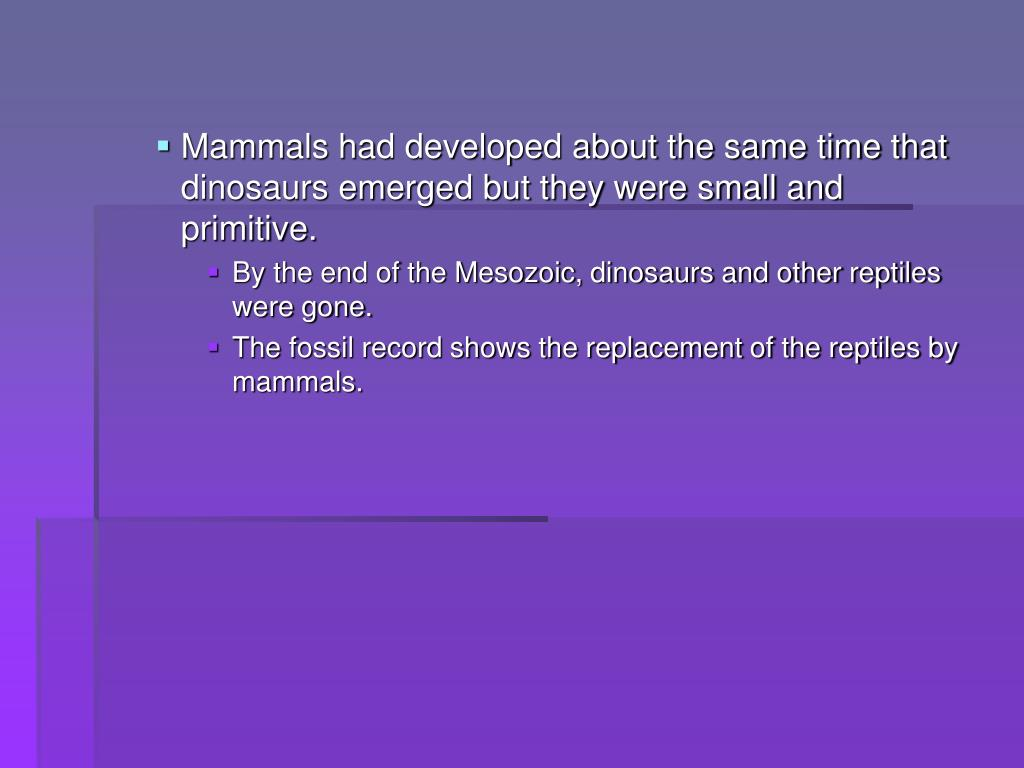 Mammals had developed about the same time that dinosaurs emerged but they were small and primitive.