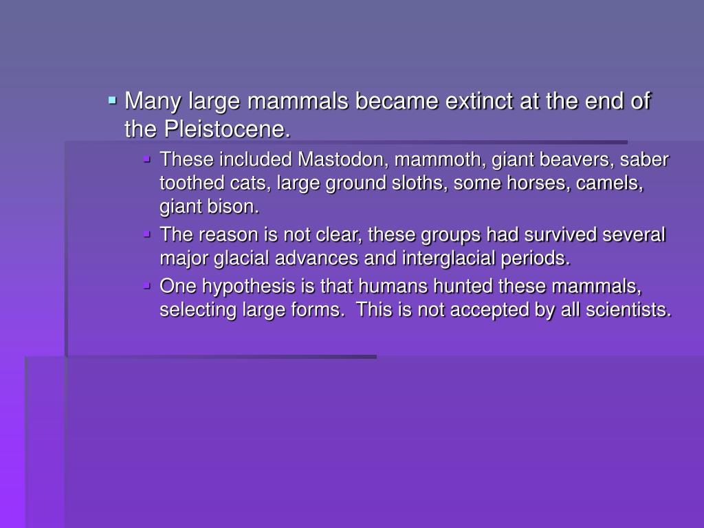 Many large mammals became extinct at the end of the Pleistocene.