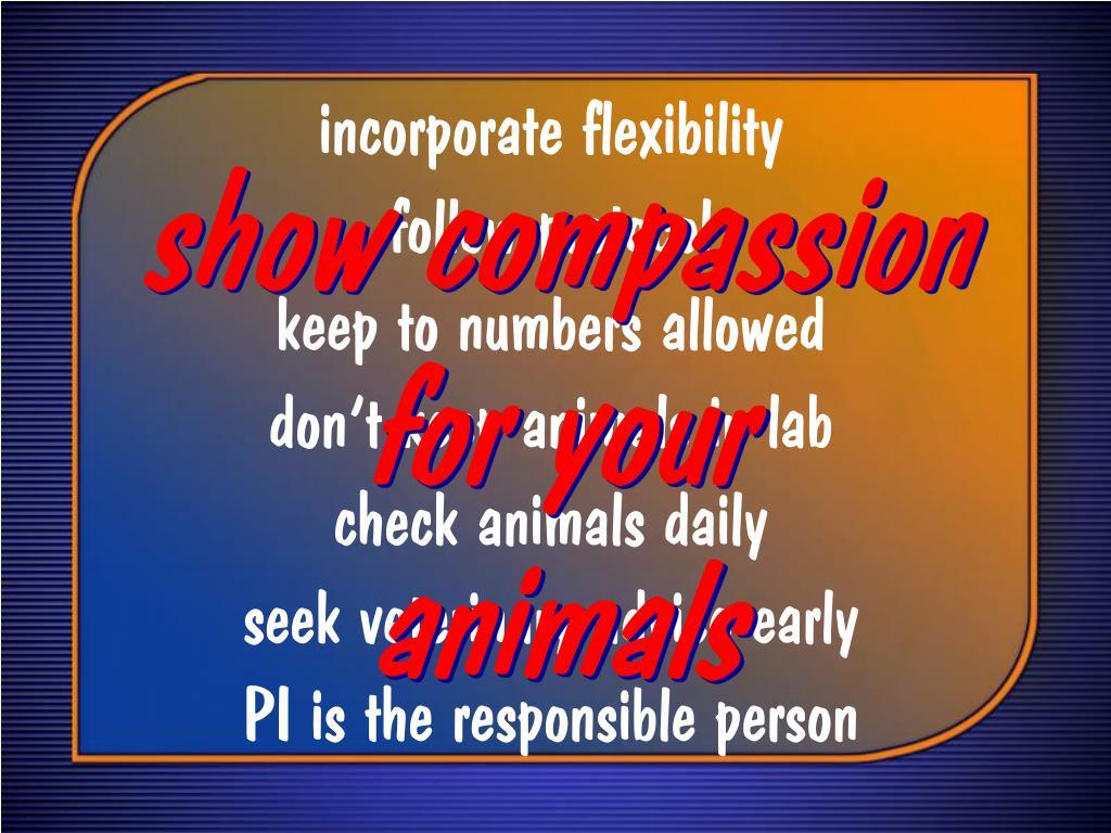 incorporate flexibility