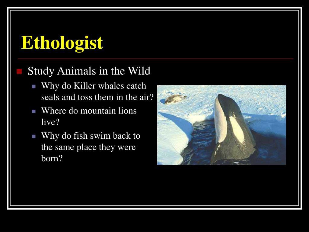 Ethologist