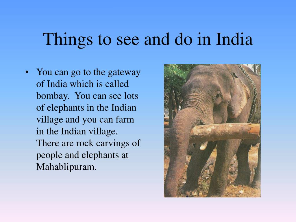 Things to see and do in India