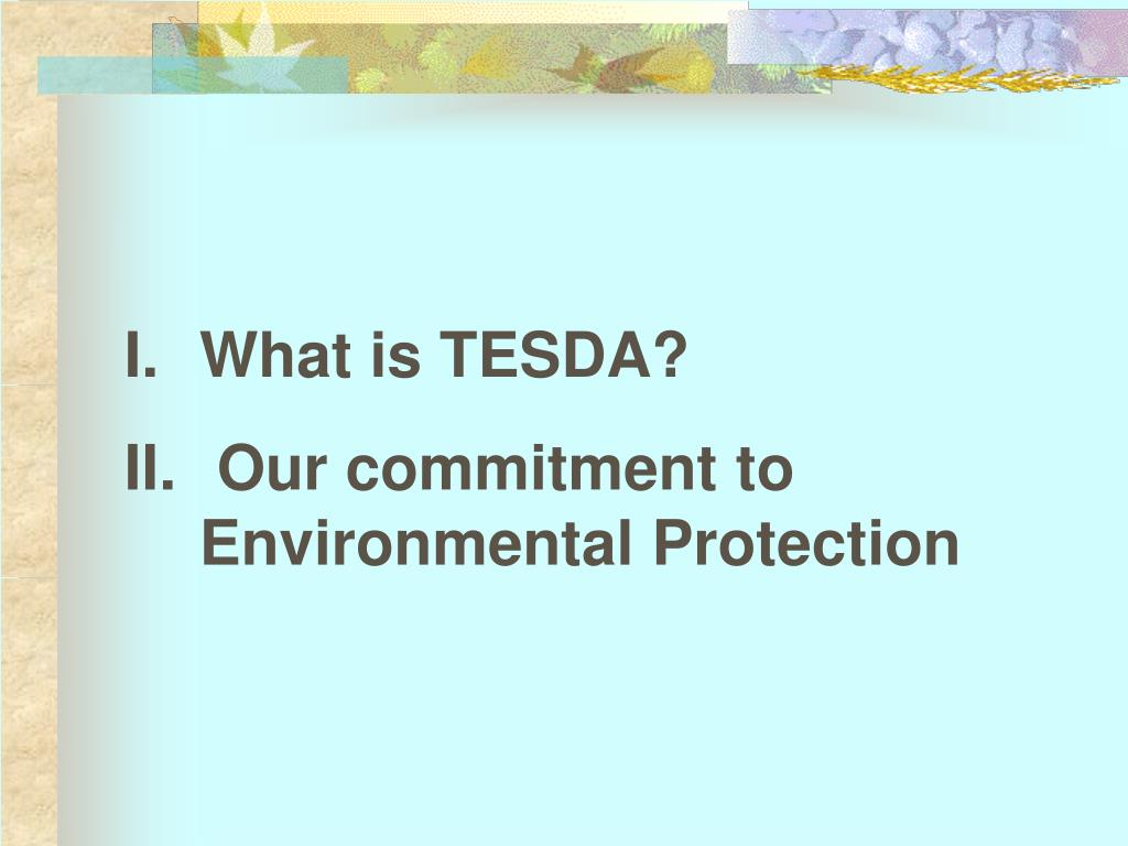 What is TESDA?