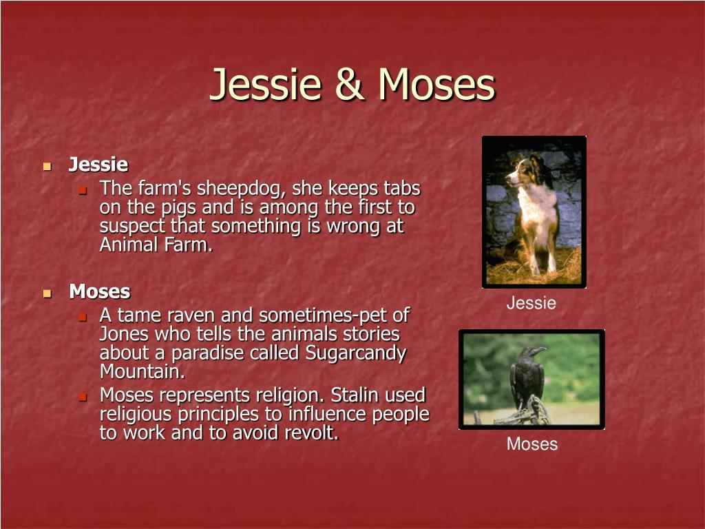 Jessie & Moses