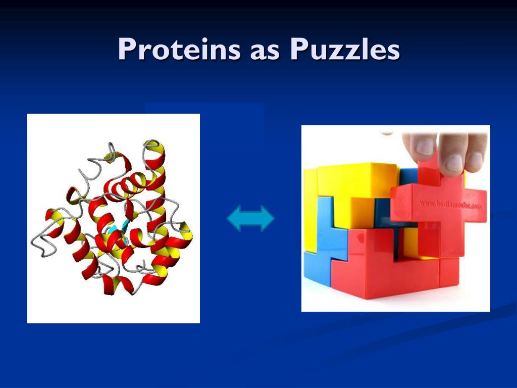Proteins as Puzzles