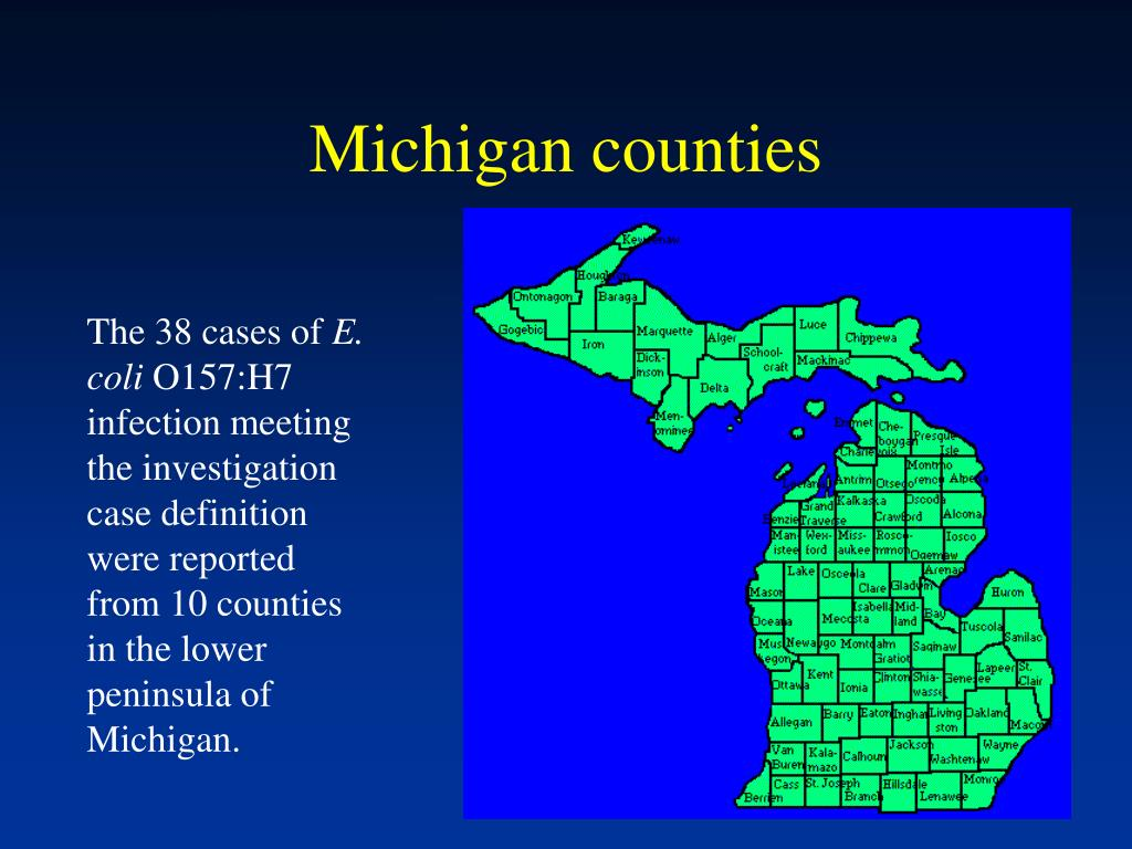 Michigan counties