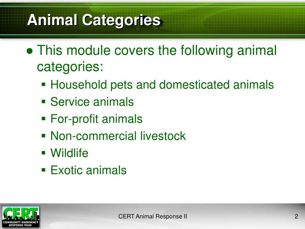 Animal Categories